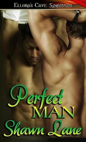 Perfect Man  by  Shawn Lane