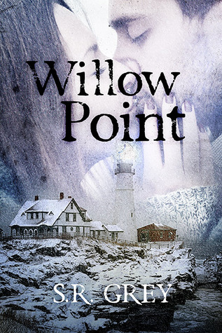 Willow Point (A Harbour Falls Mystery, #2)  by  S.R. Grey