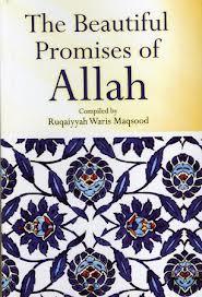 The Beautiful Promises of Allah  by  Ruqaiyyah Waris Maqsood