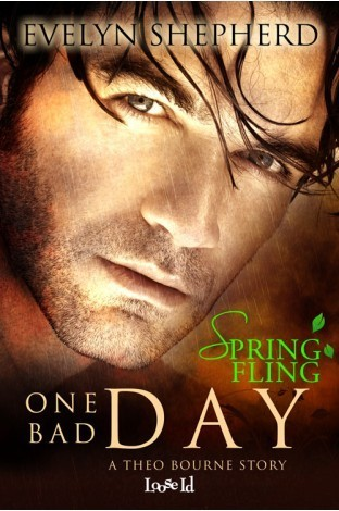 One Bad Day: A Theo Bourne Story  by  Evelyn Shepherd