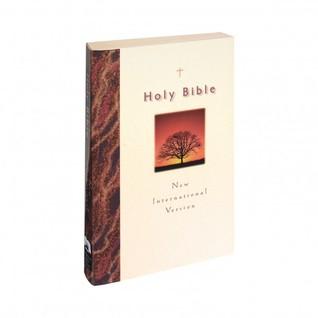 Bible NIV International  by  Niv International