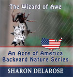 The Wizard of Awe: An Acre of America Backyard Nature Series Sharon Delarose