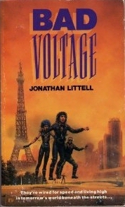 Bad Voltage  by  Jonathan Littell