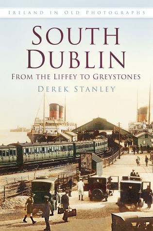 South Dublin Derek Stanley
