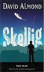 Skellig: The Play  by  David Almond