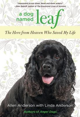 A Dog Named Leaf: The Hero from Heaven Who Saved My Life  by  Allen Anderson