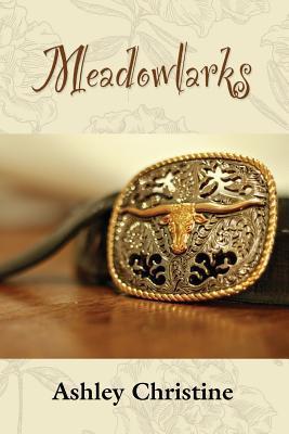Meadowlarks  by  Ashley Christine