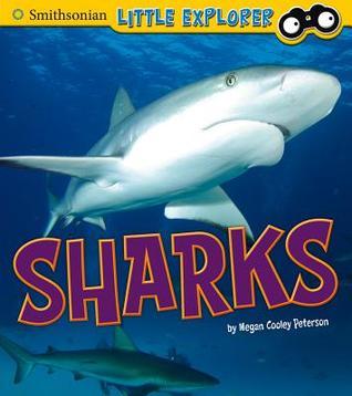 Sharks Megan Cooley Peterson