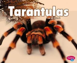 Tarantulas  by  Jeni Wittrock