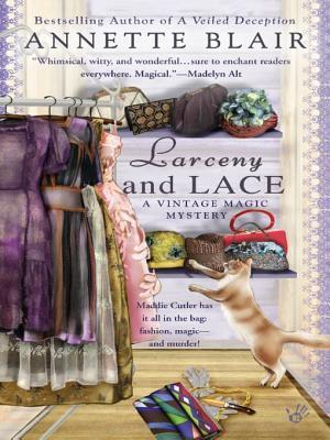 Larceny and Lace (A Vintage Magic Mystery #2)  by  Annette Blair