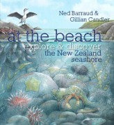 At the Beach Explore and Discover the New Zealand Seashore  by  Ned Barraud