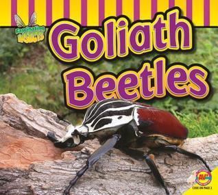 Goliath Beetle Aaron Carr