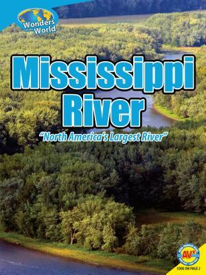Mississippi River  by  Janeen R Adil