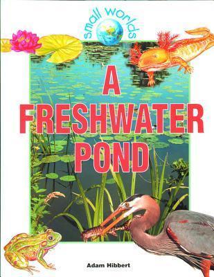 A Freshwater Pond Adam Hibbert