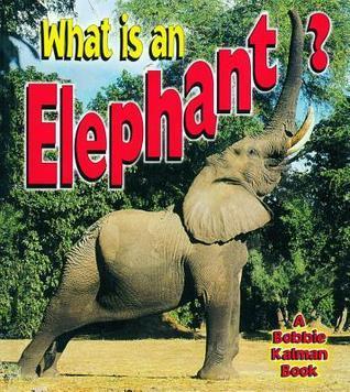 What Is an Elephant? Bobbie Kalman