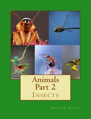 Animals Part 2: Insects  by  Andrew Vecsey