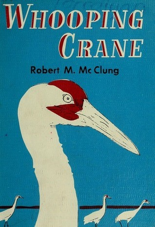Whooping Crane  by  Robert M. McClung