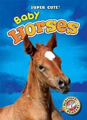 Baby Horses  by  Bethany Olson