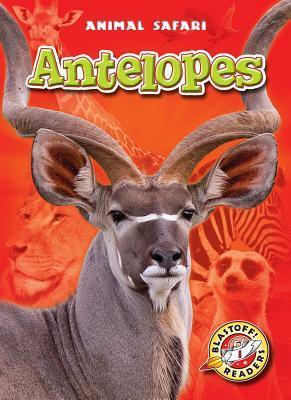 Antelopes  by  Margo Gates