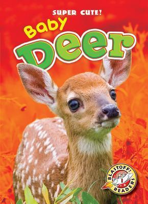 Baby Deer Bethany Olson
