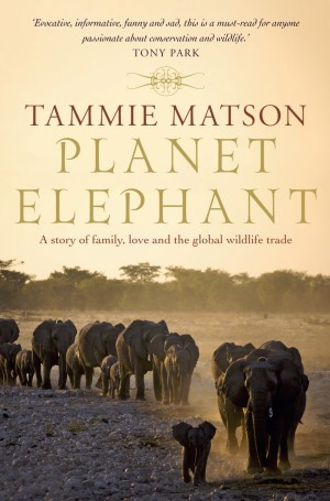 Planet Elephant  by  Tammie Matson