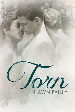 Torn  by  Shawn Bailey