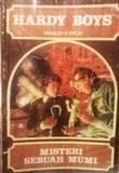 Misteri Sebuah Mumi  by  Franklin W. Dixon