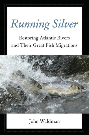 Running Silver: Atlantic Rivers and the Conservation of a Great American Legacy  by  John Waldman