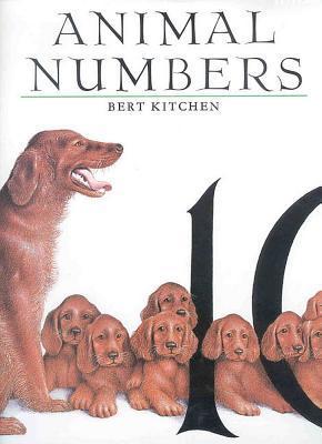 Animal Numbers Bert Kitchen