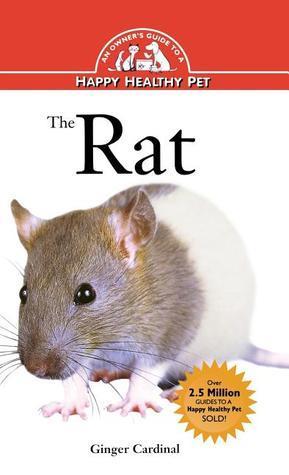 Rat  by  Ginger Cardinal