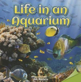 Life in an Aquarium Jodi Mercurio
