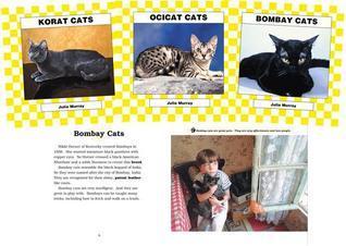 Cats Set 3  by  Julie Murray