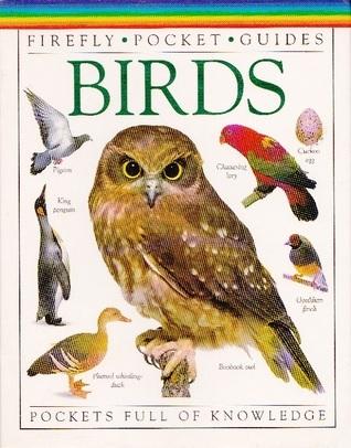 Birds Barbara Taylor