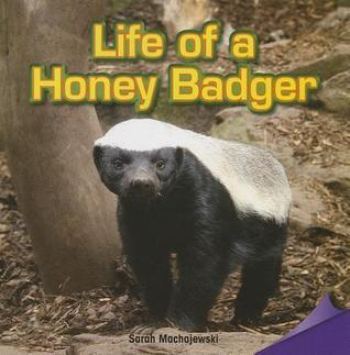 Life of a Honey Badger  by  Sarah Machajewski