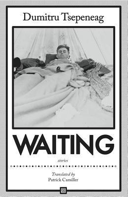 Waiting: Stories Dumitru Țepeneag