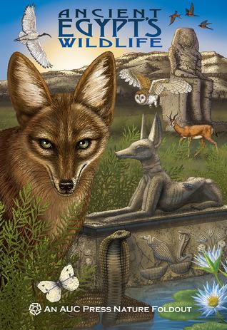 Ancient Egypts Wildlife: An AUC Press Nature Foldout  by  Dominique  Navarro