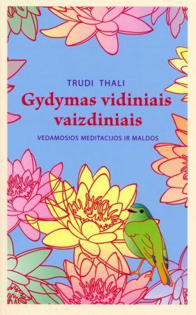 Gydymas vidiniais vaizdiniais  by  Trudi Thali