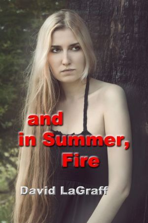 And In Summer, Fire  by  David LaGraff
