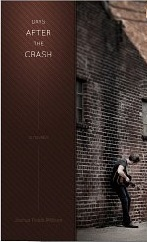 Days After the Crash Joshua Fields Millburn