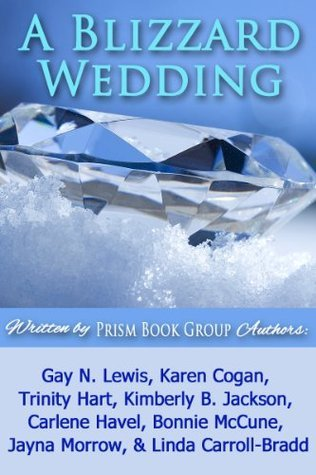 A Blizzard Wedding (Lightning Strikes #3)  by  Gay N. Lewis