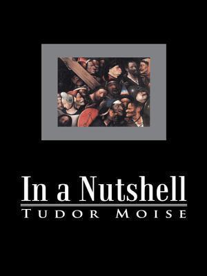 In a Nutshell  by  Tudor Moise