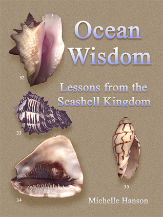 Ocean Wisdom Lessons From The Seashell Kingdom Michelle Hanson