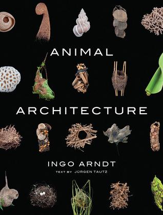 Animal Architecture Ingo Arndt