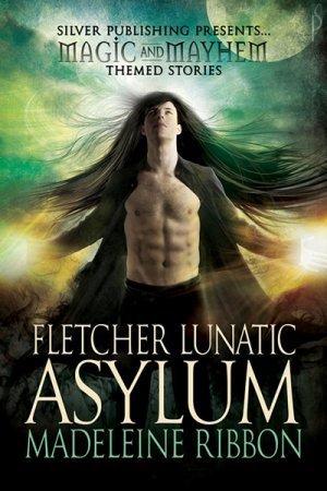 Fletcher Lunatic Asylum  by  Madeleine Ribbon