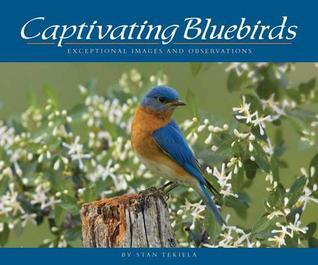 Captivating Bluebirds: Exceptional Images and Observations  by  Stan Tekiela