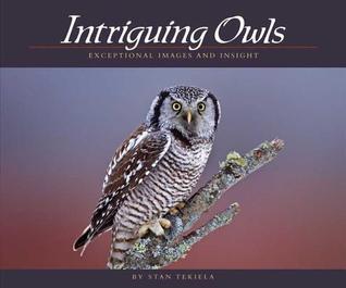Intriguing Owls: Extraordinary Images and Insight Stan Tekiela