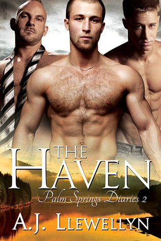 The Haven (Palm Springs Diaries, #2) A.J. Llewellyn