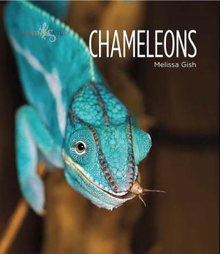 Chameleons Melissa Gish