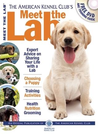 Meet the Lab  by  American Kennel Club