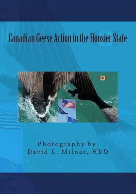 Canadian Geese Action in the Hoosier State David L. Milner Hdd